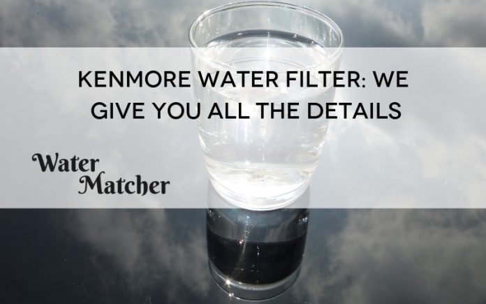 Kenmore Water Filter